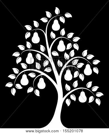 vector pear tree isolated on black background