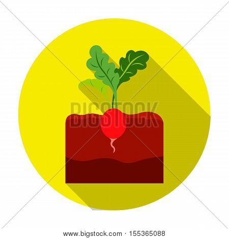 Radish icon in flat style isolated on white background. Plant symbol vector illustration.