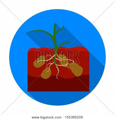 Potato icon in flat style isolated on white background. Plant symbol vector illustration.