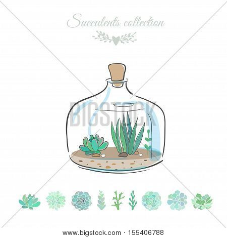 floral composition in decorative bottle, vector illustration with succulents isolated on white