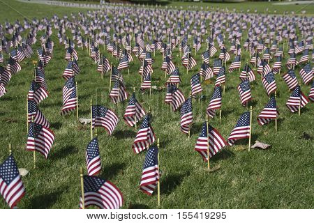 Veterans Day is an official United States public holiday