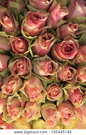 Wedding table centerpiece with pink greenish roses