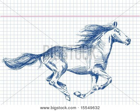 Hand drawn horse Vector. Visit my portfolio for big collection of doodles