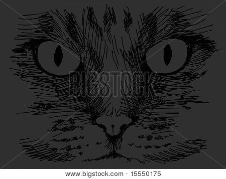Hand drawn black cat