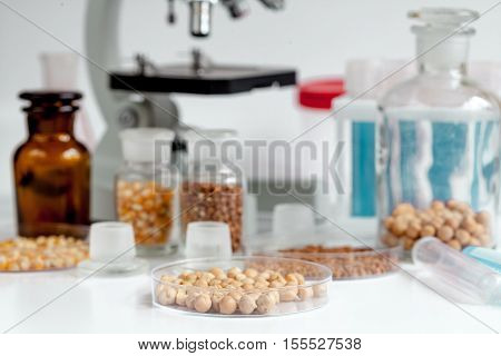 Laboratory for food analysis chick-pea test no one close up