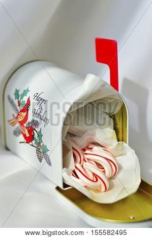 White Mailbox New Year