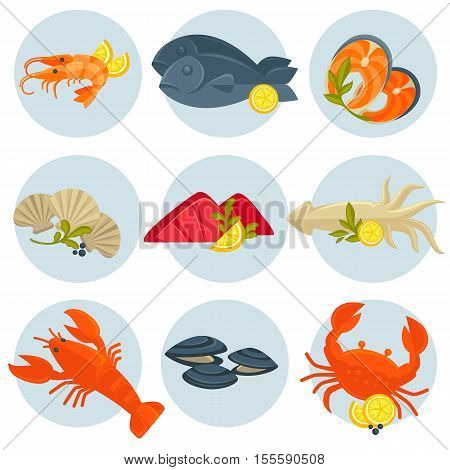 Seafood set: crab, lobster, fish and shrimp, squid and salmon, prawn, mussel and oyster. Shellfish, shell and sea food - flat vector illustration for restaurant design. Isolated on white.