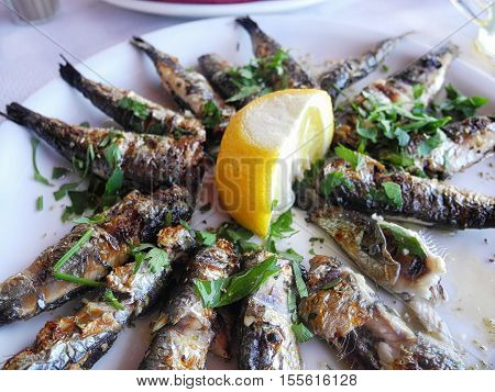 Little fried sardines on a white plate