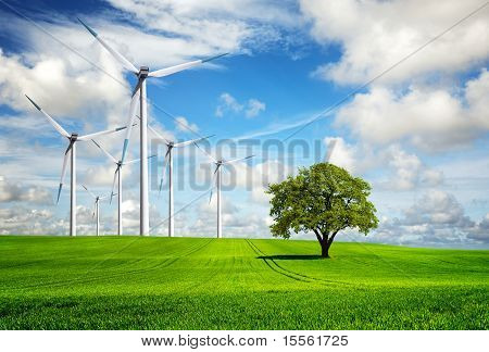 Wind Of Change, turbinas