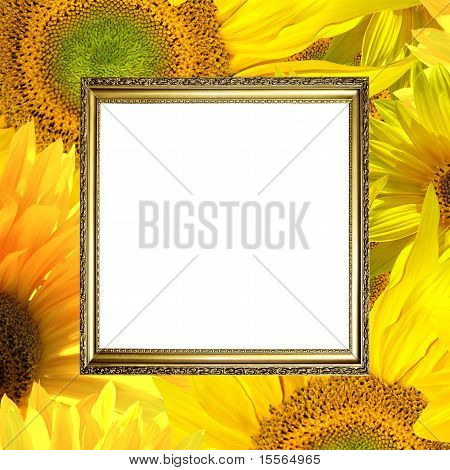 Gold Frame On Sunflower Background