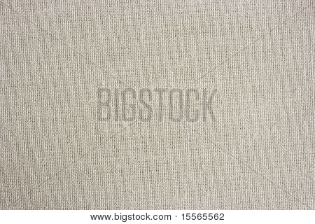 Light Linen Canvas Texture
