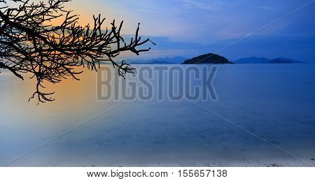 Landscape twilight or sunset sky with silhouette twigs or dry tree on koh mak beach (mak island) with mountain at Trad Province in Thailand