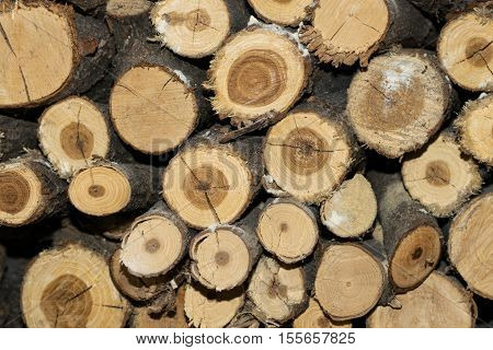 Stack of round firewood background texture - natural fuel