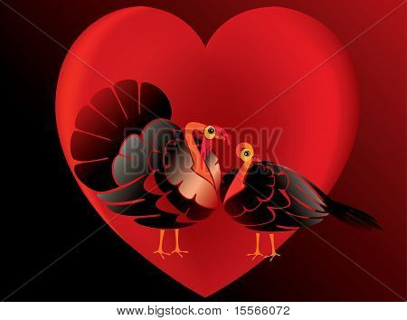 Couple turkeys in love