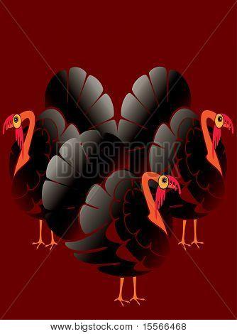 Beautiful male turkeys