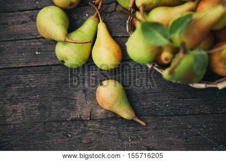 Fruit background. Fresh organic pears on old wood. Pear autumn harvest