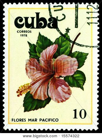 Vintage  Postage Stamp. Tues Flowers Pacifist. 4.