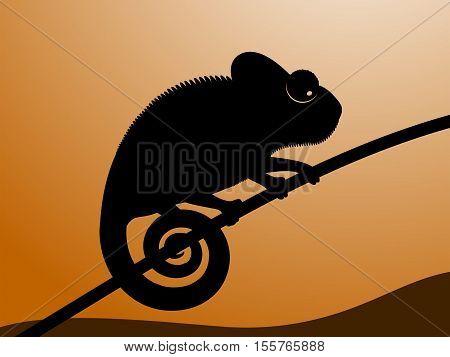 Vector illustration of chameleon. Black contour of a chameleon on a sunset background.