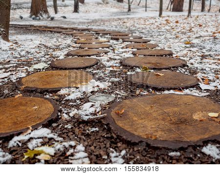 Design path in the park in the fall from round saw cuts of a tree the fallen-down foliage and snow.