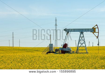 rocking oil rapeseed field rocking oil. Oil pumps. Oil industry equipment. winter landscape. winter landscape oil pump near coniferous forest in sunny cold day