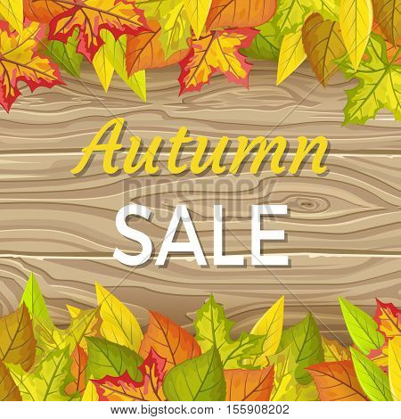 Autumn sale vector concept. Flat design. Colored leaves of variety trees on top and bottom with wooden background and sample text in the middle. For sale and discount advertising. Product label design