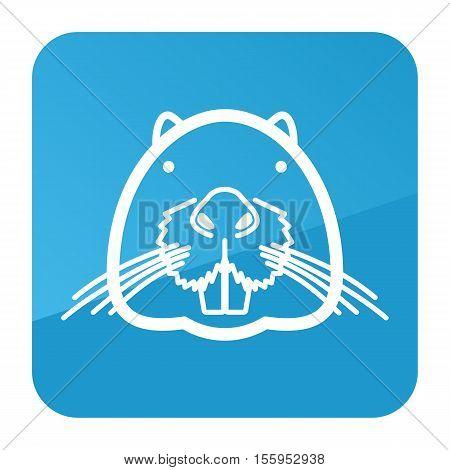 Otter beaver icon. Animal head vector symbol eps 10