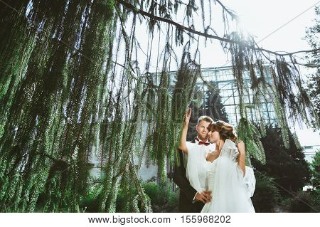 Wedding photo shooting. Bride and bridegroom standing under pine tree. Woman holding branches and man embracing her. Outdoor
