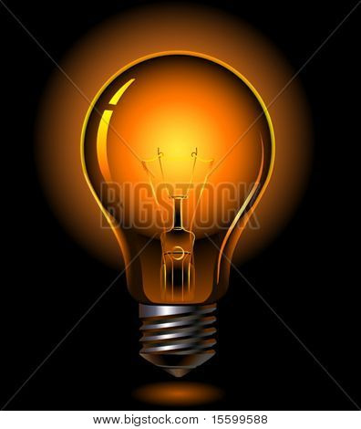 vector light bulb is lighting