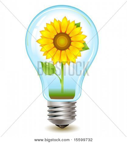 realistic vector eco-friendly bulb with plant inside