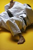 pic of judo  - Two judo fighters wrestling hard in a tournament  - JPG