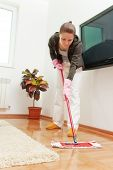 stock photo of dust mites  - House cleaning  - JPG