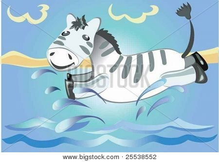 Zebra on water