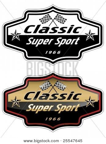 Vector automotive race emblem.