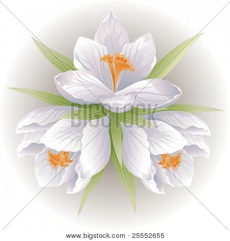 Bunch of flowers. Vector illustration.