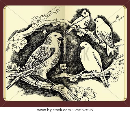 Moleskine drawing of birds flowers and branches - high-detailed ink illustration (JPG version)