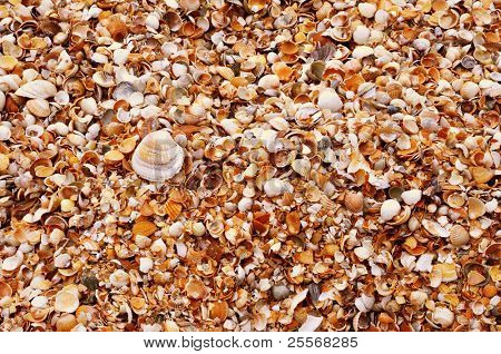 Wet sand texture background