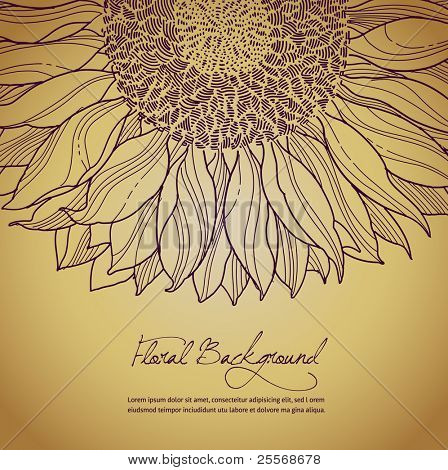 vector floral summer background with sunflower