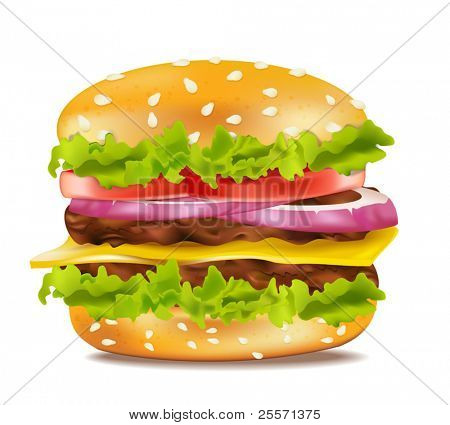 Vector cheeseburger on a white background