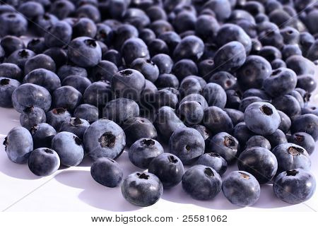 Bilberries on the white background