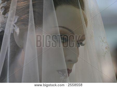 Beauty Behind Veil