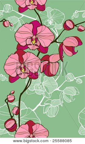 orchid -floral seamless pattern