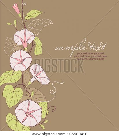 card with vector stylized convolvulus