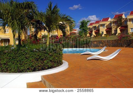 Recliners By Swimming Pool In Tropical Setting