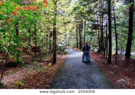 Girl Pushing Wheelchair