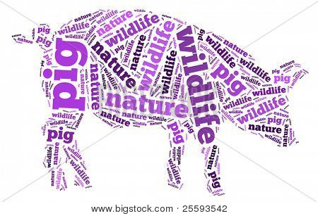 Textcloud: silhouette of pig