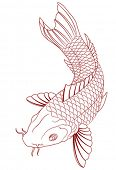 foto of dragon-fish  - vector carp - JPG