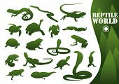 stock photo of anaconda  - Reptile silhouettes isolated on white - JPG