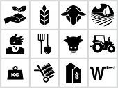 stock photo of silos  - Agriculture and farming icons - JPG