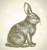 stock photo of rabbit year  - new year bunny beautiful drawing - JPG