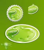 vector stickers and bottle cap with a juicy, fresh background with leaves and drops